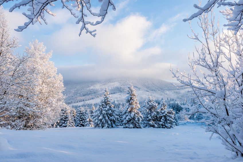 busreise weihnacht und silvester in den wiener alpen. Black Bedroom Furniture Sets. Home Design Ideas